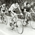 Felice Gimondi: The Aristocrat by Wiscot